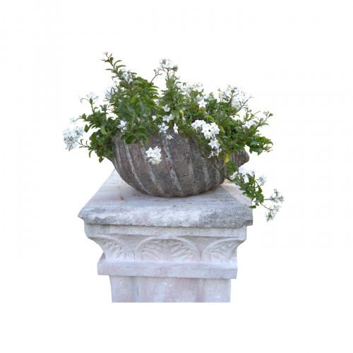Coquillage demeure et jardin for Demeure et jardin