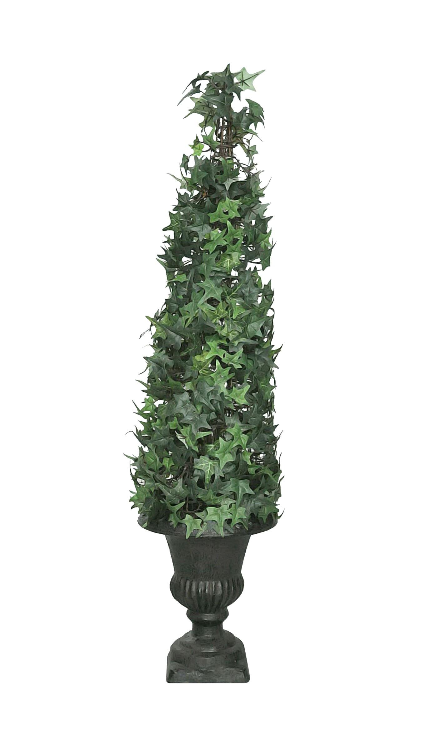 Lierre grimpant sur urne m dicis demeure et jardin for Plante decorative jardin