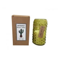 Bougie Botanic - parfum Cèdre noir