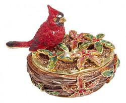 Oiseau sur nid